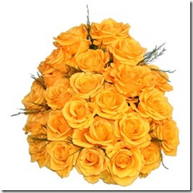 24_two_dozen_yellow_roses_bunch
