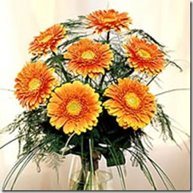 26_gerbera_bunch